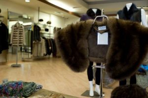 Classic Stole In Furrier Showroom