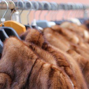 Fur Coat Buyers